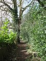 Footpath from Hatton Hill to Kennel Lane - geograph.org.uk - 1771643.jpg