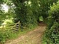 Footpath near South Knighton - geograph.org.uk - 902052.jpg