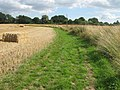 Footpath to Tuesnoad Farm - geograph.org.uk - 1427923.jpg