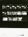 Ford A0057 NLGRF photo contact sheet (1974-08-11)(Gerald Ford Library).jpg