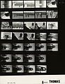 Ford A9583 NLGRF photo contact sheet (1976-04-26)(Gerald Ford Library).jpg