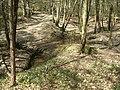 Ford across Sheepwash Ghyll, Lower Beeding - geograph.org.uk - 407216.jpg