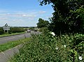 Forest Road north of Woodhouse - geograph.org.uk - 516519.jpg