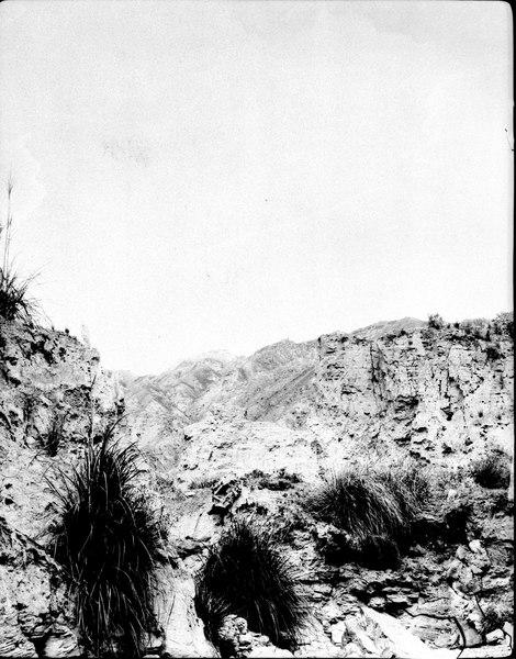 File:Formations- och vegetationsbild. La Paz-dalen, Sydamerika. Bolivia - SMVK - 002411.tif