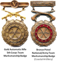 Obsolete badges of the United States military - Wikipedia