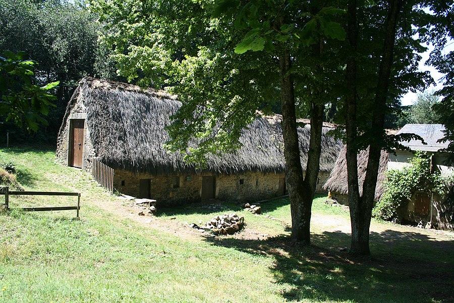 Fraisse-sur-Agout (Hérault) - Ferme de Prat Alaric avec son toit couvert de chaume de genêts (Cytisus scoparius).