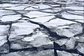 Frozen Moskva River near Neskuchny Garden (16263475539).jpg