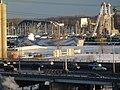 Frozen Toronto harbour, 2013 12 16 B (15).JPG