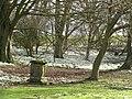 Garden, The Binns - geograph.org.uk - 340509.jpg