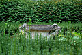 Garden Urn (8017919663).jpg
