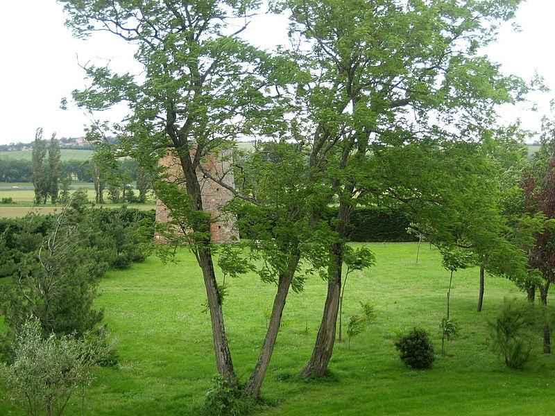 Garden of Maison d'Hôtes de Bigot. Villenouvelle (département de la Haute-Garonne, France)