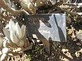 Gardenology.org-IMG 2316 hunt0903.jpg