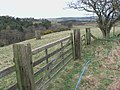Gateway overlooking Lilburn Burn - geograph.org.uk - 1205083.jpg