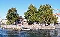 Geneve Ile Rousseau 2011-09-10 10 11 59 PICT4586.JPG
