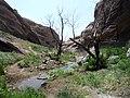 Geocaching at Vasquez Rocks (2426485985).jpg