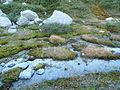 Glacier de Moiry (8).jpg