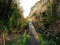 Glen Maye - geograph.org.uk - 773050.jpg
