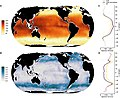 Global phytoplankton species richness and turnover.jpg