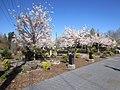 Gresham, Oregon (2021) - 063.jpg