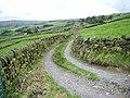 Greystone Lane - geograph.org.uk - 1011720.jpg