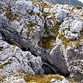 Grigna settentrionale - panoramio (6).jpg