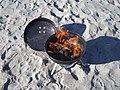 Grilling on the Beach in February.jpg