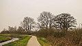 Groep bomen aan fietspad om Langweerderwielen (Langwarder Wielen). Oostkant 03.jpg