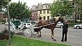 Gt George St, Charlottetown (471313) (9450776126).jpg