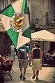 Guimaraes (Portugal) (36940105065).jpg