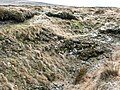 Gulley on the moor - geograph.org.uk - 678008.jpg