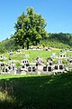 Hřbitov v Osadném 1.JPG