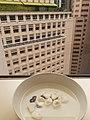 HK 中環 Central 雪廠街 6 Ice House Street 歷山大廈 Alexandra House view Prince's Building October 2020 SS2 01.jpg