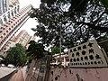 HK CWB 大坑 Tai Hang 銅鑼灣道 Tung Lo Wan Road facades October 2019 SS2 30.jpg