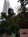 HK ML 半山區 Mid-levels 寶雲道 Bowen Road February 2020 SS2 04.jpg