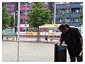 Halberstadt - panoramio.jpg