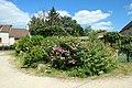 Hameau de Villeneuve à Magny-les-Hameaux le 12 juin 2017 - 22.jpg