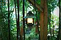 Hanging Lantern (8017923625).jpg