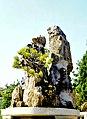 Hangzhou, Botánico 1978 16.jpg