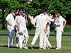 Hatfield Heath CC v. Netteswell CC on Hatfield Heath village green, Essex, England 30.jpg