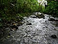 Hawaii Big Island Kona Hilo 198 (7025089553).jpg