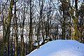 Herz-Jesu-Berg Velburg NM 0096.jpg
