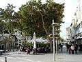 Herzl Street P1090004.JPG