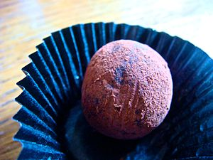 chocolate truffle dusted with cocoa powder in a paper cup