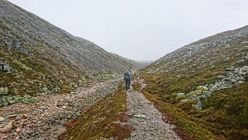 File:Hiker in Sonfjället.jpg