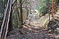 Himmelberg Klatzenberg Waldweg 25112012 101.jpg