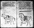Hindi Manuscript 191, fols. 10 verso, 11 rec Wellcome L0024203.jpg