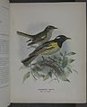History of the birds of NZ 1st ed p098-2.jpg