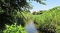 Hodokubo-River Wand.JPG