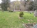 Hojná Voda hřbitov.jpg