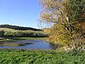 Hollybush Pond in Autumn - geograph.org.uk - 598183.jpg